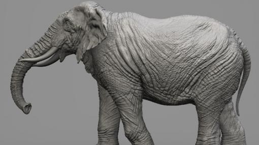 "WORK 029 ""Elephant"" / ZBrushでリアリティのある生物モデリング - 連載"