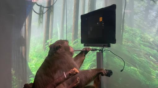 脳にチップを埋め込んだサルが「思考」だけでゲームをする映像が公開される - GIGAZINE