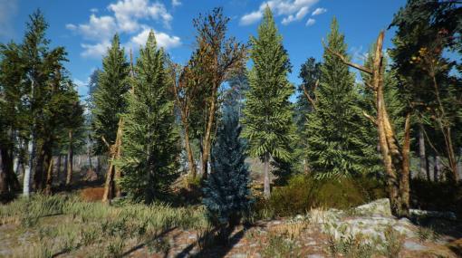 """『Fallout 4』のマップ内に""""約1万本""""もの木々を生やす大規模Modが配布中。荒廃したボストンが緑豊かな自然地帯へと生まれ変わる"""