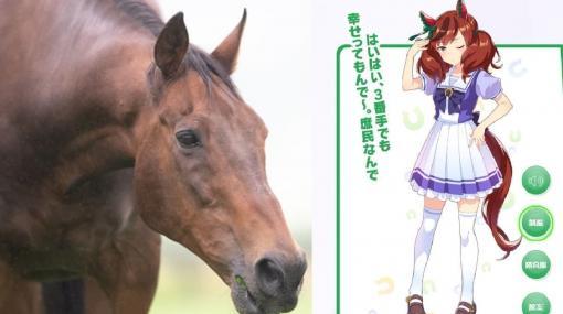 「ナイスネイチャ」の33歳誕生日を祝う寄付キャンペーンが約3500万円を集め終了。『ウマ娘』人気後押しで支援者は1万6000人超え、集まった寄付金は引退馬の余生のために使用