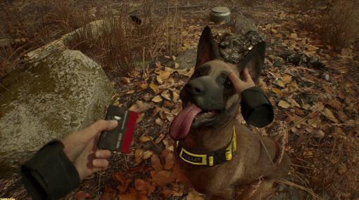 ホラーゲーム『ブレア・ウィッチ』VR版のOculus Rift対応版が配信開始。Touchコントローラーで忠犬ブレットを撫でられる