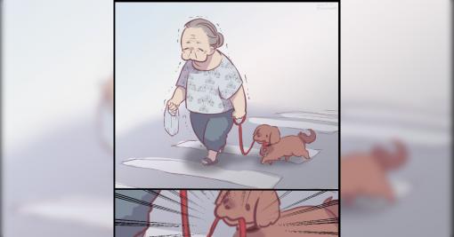 「どっちが散歩をさせているの?」「これは尊い」この間見たおばあちゃんとすごい犬のイラストに大反響 - Togetter