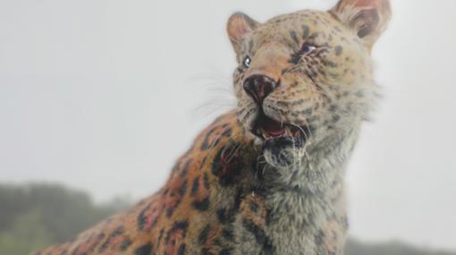 "WORK 034 ""Building the Leopard's Fur"" / ファー表現を直感的に扱う - 連載"