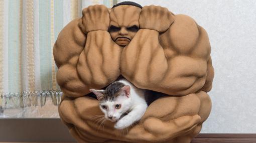 """""""地上最自由男""""が猫の眠りを守るッッ!「刃牙」ビスケット・オリバの猫ちぐらが公開"""