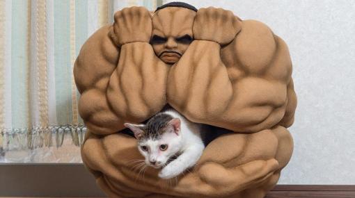 「地上最自由」の男が猫の寝床となる。『刃牙』のアンチェインことビスケット・オリバの猫ちぐら公開