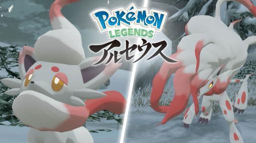 ヒスイのすがたのゾロア&ゾロアークをチェック! 「Pokemon LEGENDS アルセウス」の新情報公開